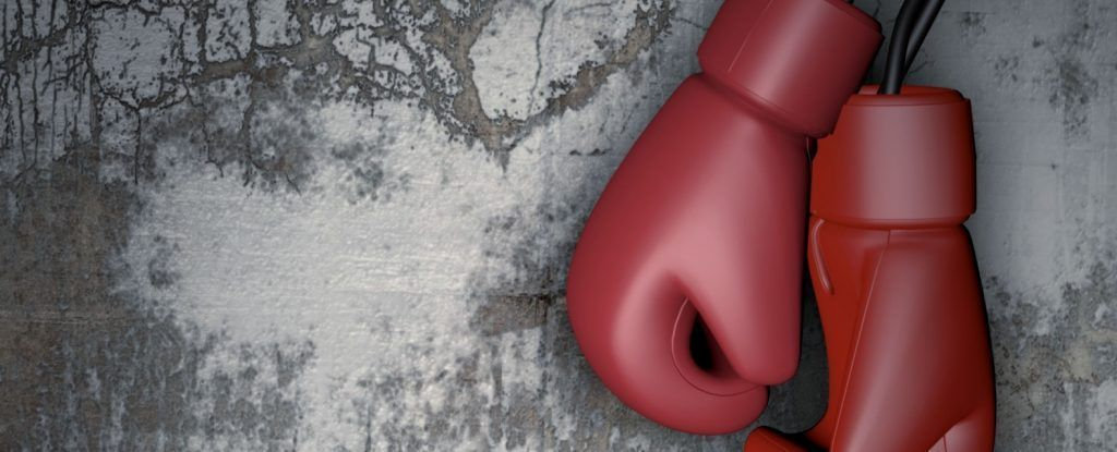 boxing-gloves-2005912